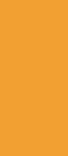 left-slice